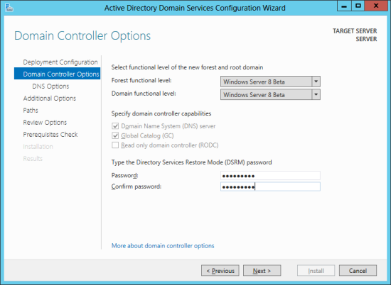Active Directory Domain Services Configuration Wizard - Domain Controller Options