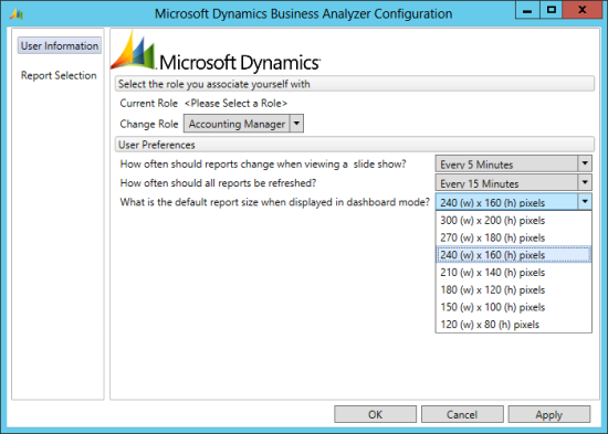 Microsoft Dynamics Business Analyzer Configuration - report size