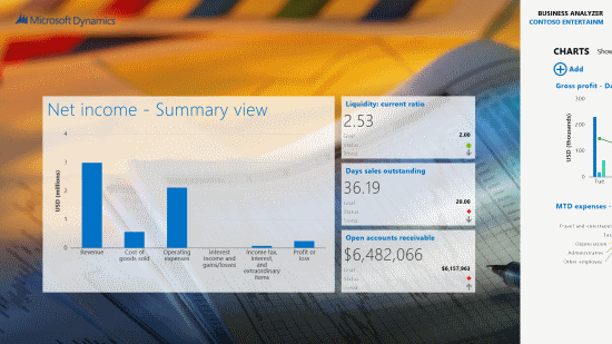 Net Income - Summary view