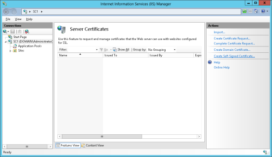 Internet Information Serices (IIS) Manager - Server Certificates