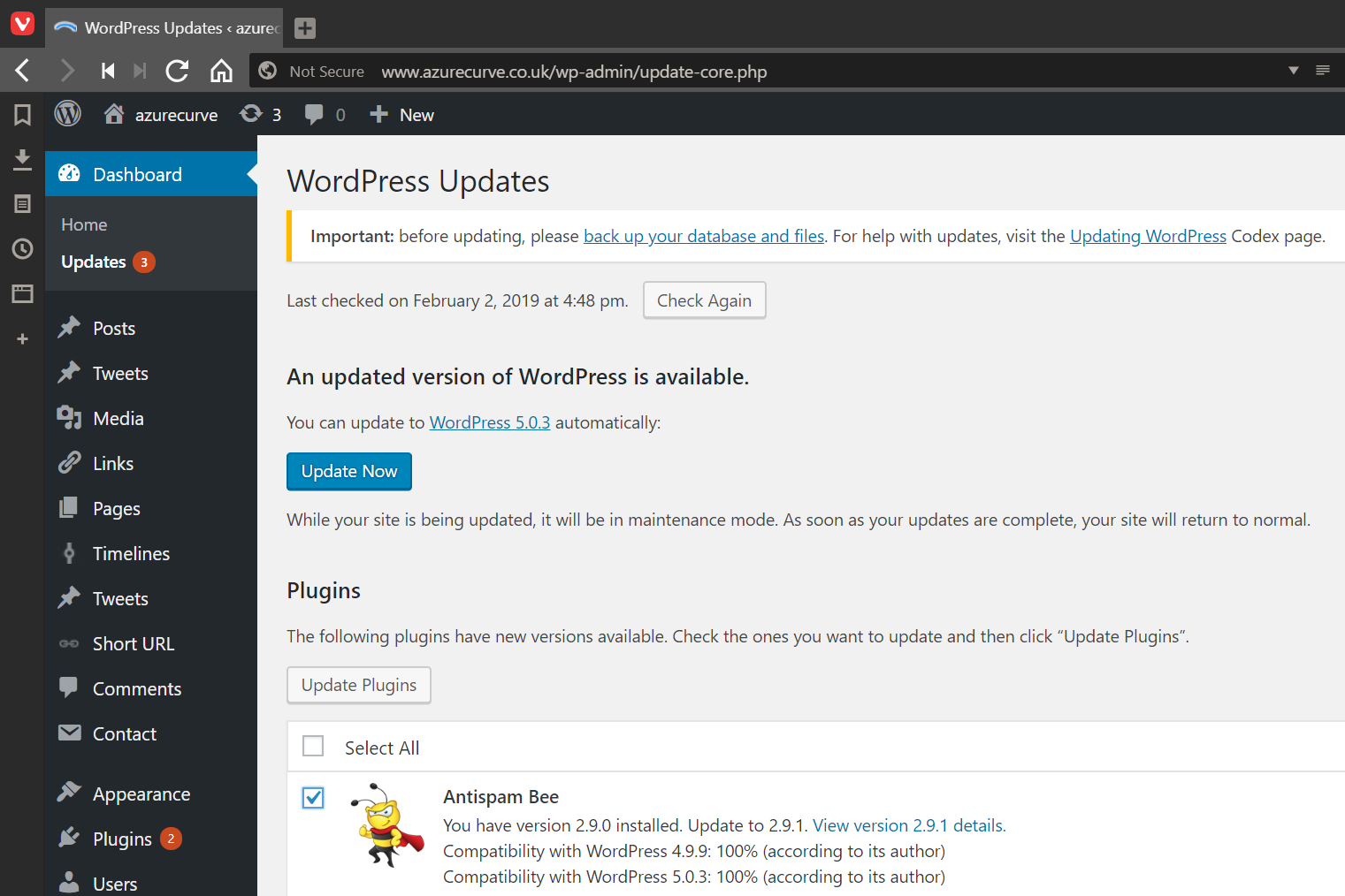 WordPress dashboard showing Update Now and Update Plugins buttons